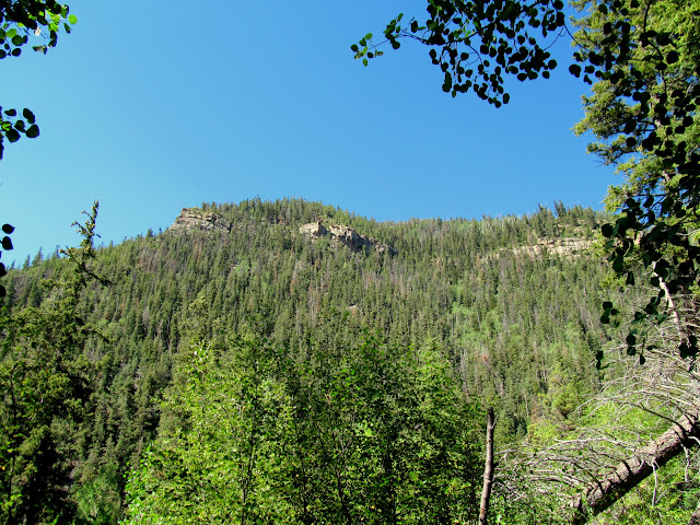 Reeder Ridge south of the canyon