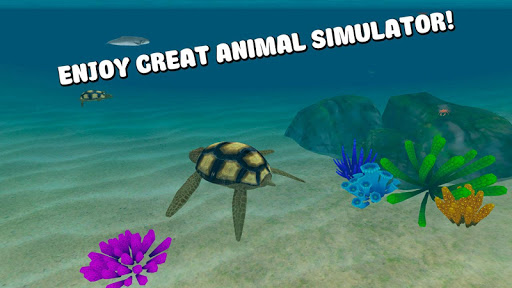 Sea Turtle Survival Simulator