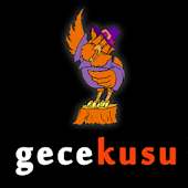 GECEKUSU