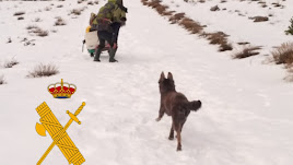 La Guardia Civil ha logrado rescatar al hombre y a sus dos perros.