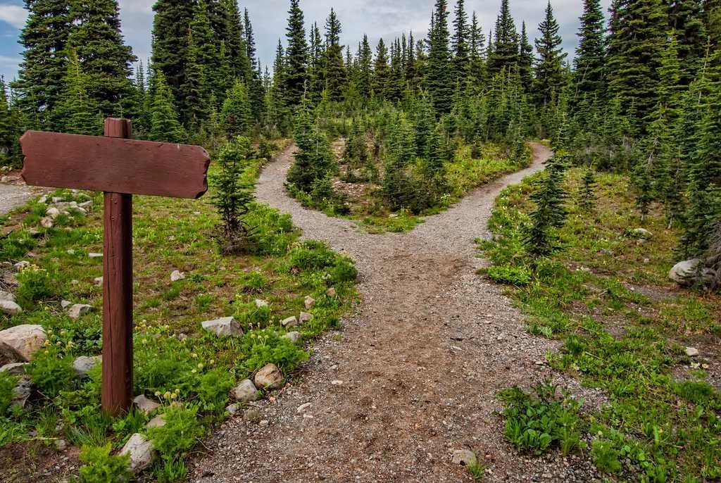 Não existe caminho certo de como esquecer alguém e nunca existirá. Você precisa escolher um caminho e cada caminho possui suas repercussões.