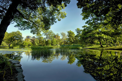 A tranquil pond in the Halifax Public Gardens, which dates to 1867.