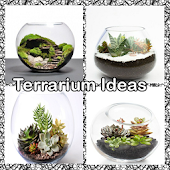 Terrarium Ideas Android APK Download Free By Bendroid