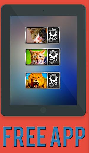 玩娛樂App|猫猫咪声音小部件免費|APP試玩