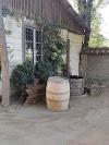 Image 5 of viña sanchez de loria, Panquehue