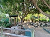 Image 8 of Santa Ana Zoo, Santa Ana
