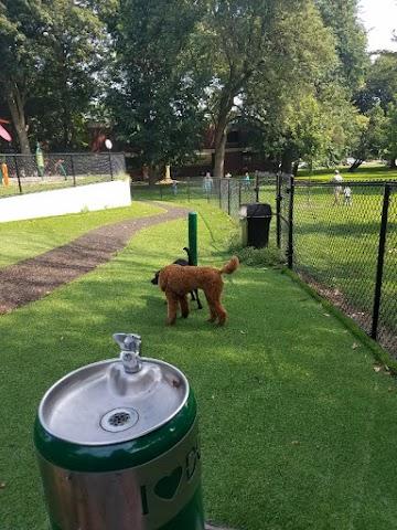 List item Buchanan Dog Park image