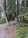Image 7 of Albion Park, Maple Ridge