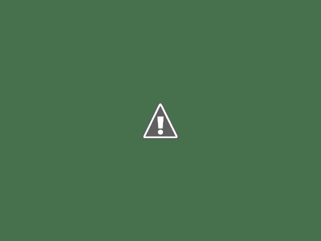 Bubblegum Alley