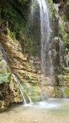 Image 1 of Ein Gedi Reserve, Ein Gedi