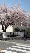 Image 1 of 藤沢市立滝の沢中学校, 藤沢市