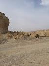 Image 7 of Neot HaKikar, Neot HaKikar