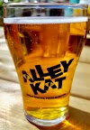 Image 3 of Alley Kat Brewing Company, Edmonton