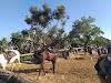 Image 2 of Cactus Ranch, Hadera