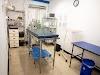 Imagen 5 de Veterinaria Doctor Brenes, San Vicente