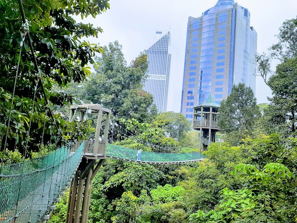 Popular tourist site KL Forest Eco Park in Kuala Lumpur