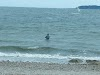 Image 6 of Fogland Beach, Tiverton
