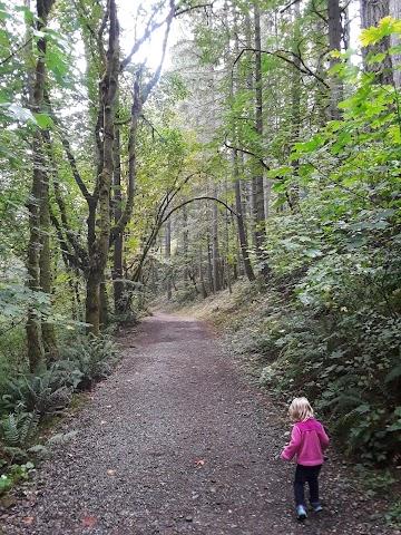 Sequalitchew Creek Trail Head