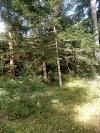 Image 8 of Naturspielpark, Mils