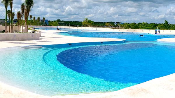 Popular tourist site Dolphin Discovery Punta Cana in Punta Cana