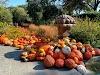 Image 2 of Dallas Arboretum and Botanical Garden, Dallas