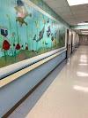 Image 6 of Hurley Medical Center, Flint