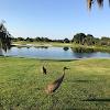 Image 5 of Forest Lake Golf Club, Ocoee