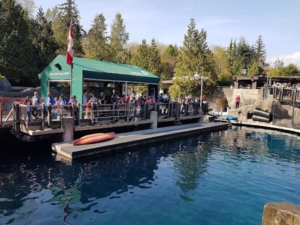 Popular tourist site Vancouver Aquarium in Vancouver
