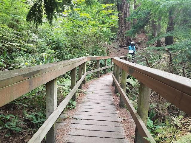 Schmitz Preserve Park image