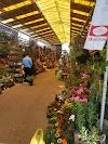 Image 7 of Mercado El Palomar, Arequipa