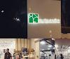Image 3 of Dubai Equine Hospital, Dubai