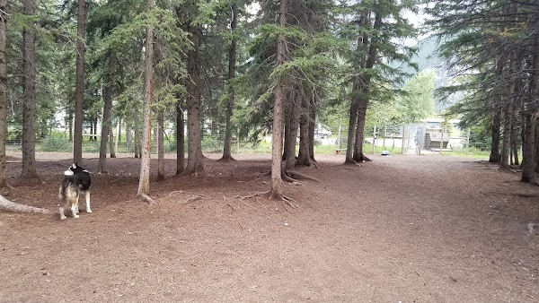 Popular tourist site Banff Off-Leash Dog Park in Banff