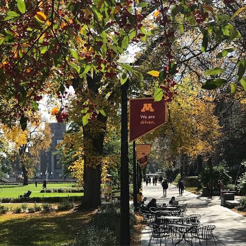 List item University of Minnesota image