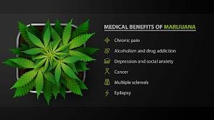 Medical Cannabis Clinics of Florida- North Palm Beach marijuana Doctor