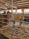 Image 3 of Washington County Fairgrounds, Hillsboro