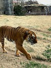 Image 5 of Tulsa Zoo, Tulsa