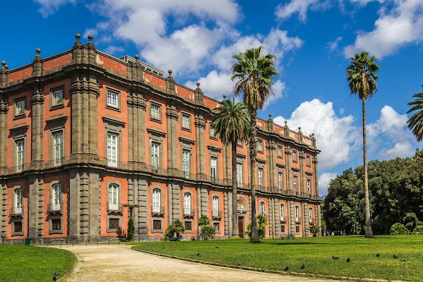 Popular tourist site Museo e Real Bosco di Capodimonte in Naples