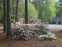 Presbyterian Home Of South Carolina-columbia Home (crcf)