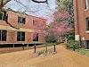 Image 3 of Vanderbilt University, Nashville