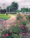 Image 8 of USA Children's & Women's Hospital, Mobile