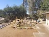 Image 5 of Dearborn Memorial Park, Poway