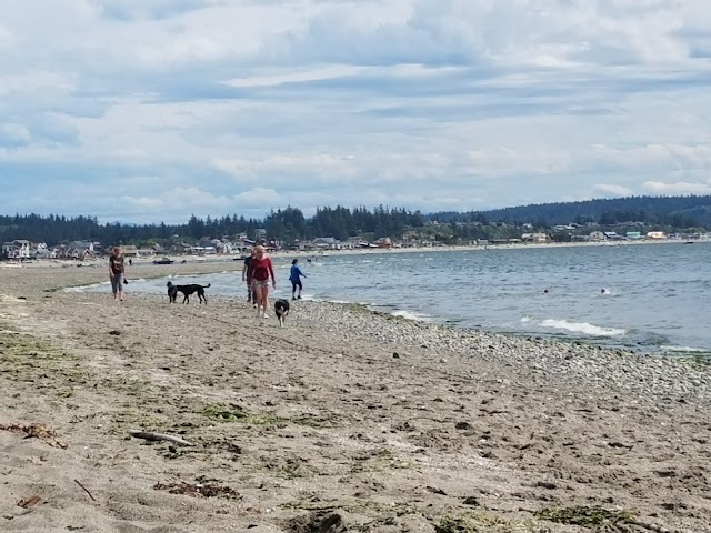 Double Bluff Beach and Off Leash Area
