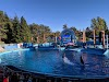 Image 6 of Six Flags Discovery Kingdom, Vallejo