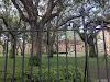 Image 2 of College of Charleston, Charleston