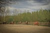 Image 6 of Nana Farm Echitatie, Calarasi