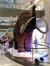 Image 8 of Shopping Bosque dos Ipês, Campo Grande