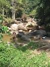 Image 2 of Sungai Batang Kali, [missing %{city} value]