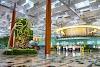 Live traffic in Changi Airport T1 Changi International Airport