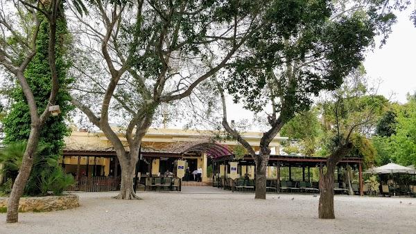 Popular tourist site Municipal Garden in Chania