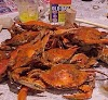 Image 6 of Abners Crab House, Chesapeake Beach